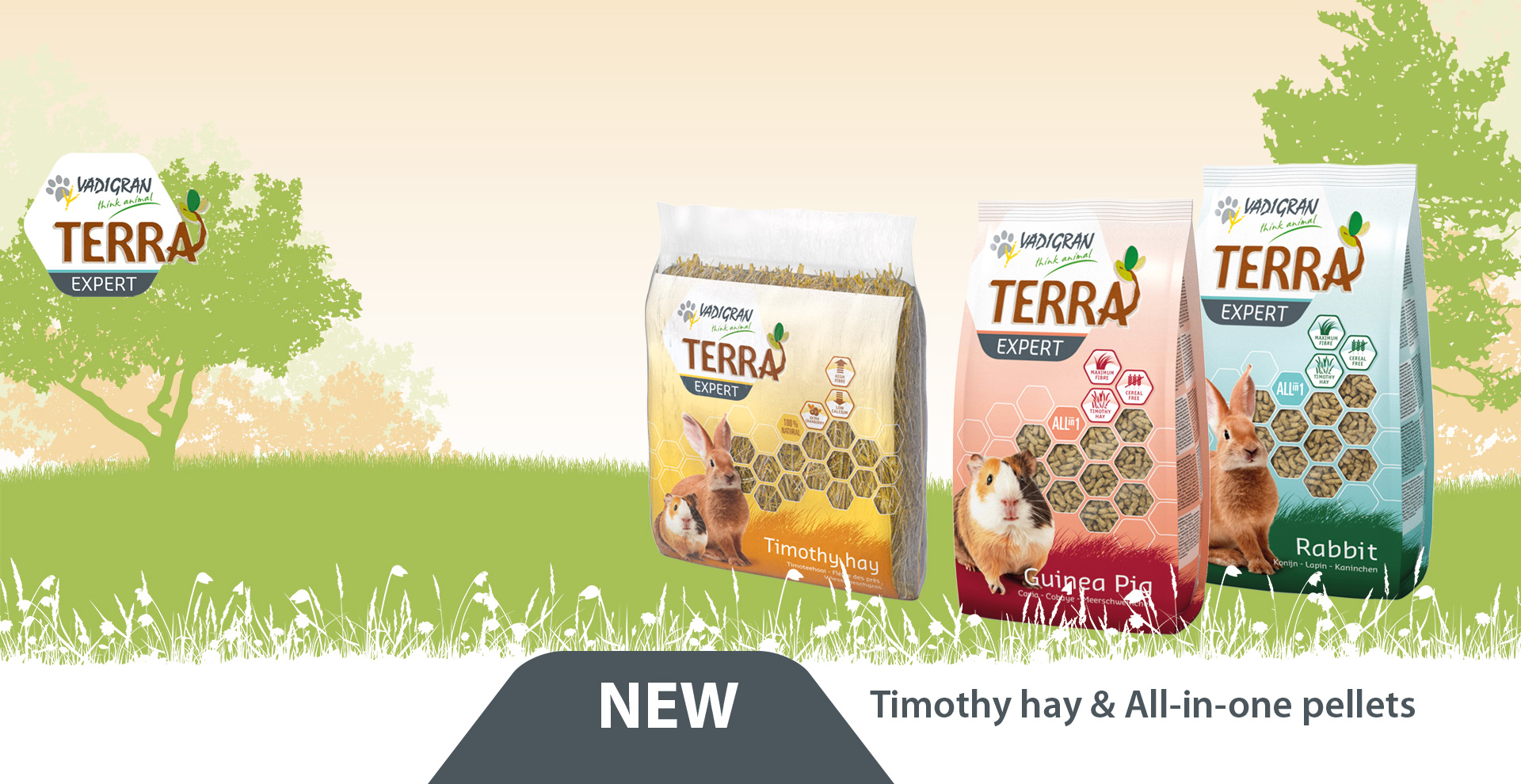 NEW IN THE TERRA FAMILY!